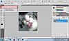 Fungsi tool dasar satu persatu, untuk yang masih newbie photoshop-rectangular-marquee-tool.png