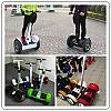 Mini Segway Nineboat Sccoter Skuter Elektrik Mainan Anak Masa Kini Murah-cats.jpg