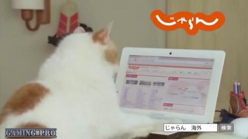 kucing_main_laptop_punya_online_shop.png