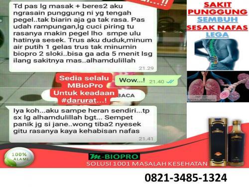 WA/TLP 082134851324  TERBAIK MBIOPRO OBAT TRADISIONAL UNTUK DEMAM ANAK 2 TAHUN GUNUNG