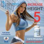 Obat Tinggi Badan