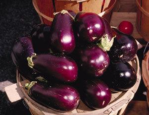 efficacy eggplant