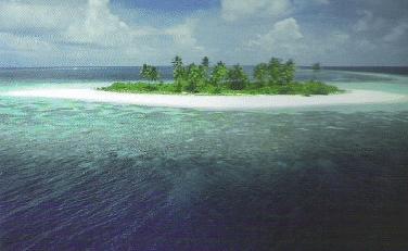 Inilah Alasan Mengapa Laut Asin