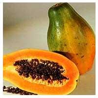 ... -buahan yang Bagus Dikonsumsi Saat Puasa   Tanaman Obat Tradisional