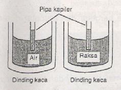 Kapilaritas  Gejala Kapiler .jpg