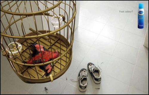 Gara-Gara Sepatu Bau